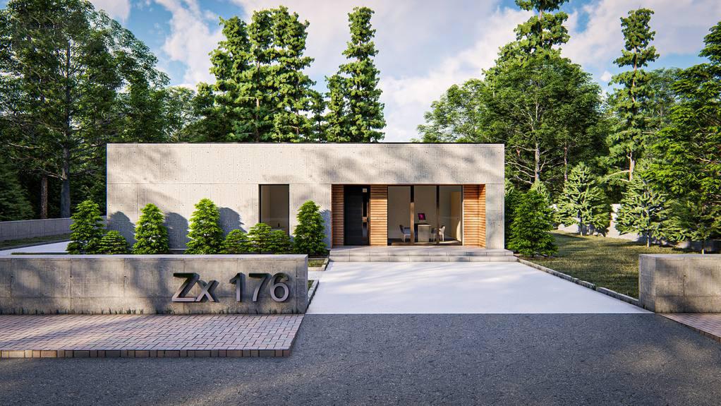 Проект дома Zx176 - 1